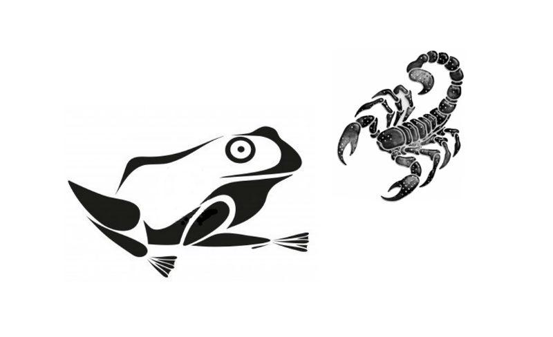 la grenouille et le scorpion